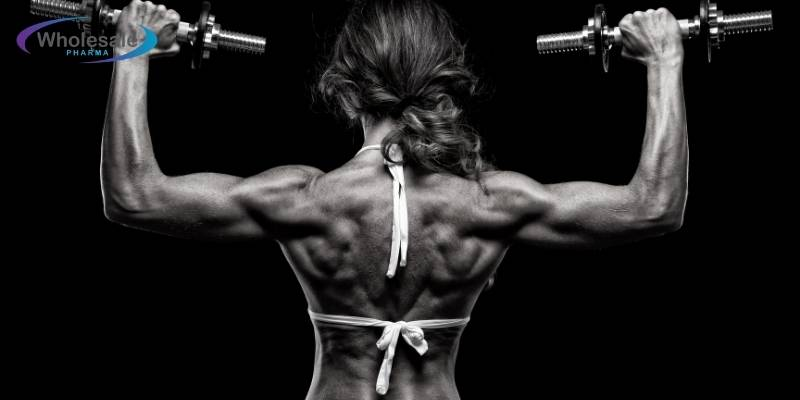 What is the very best muscle builder? - Peptides Up For Sale.